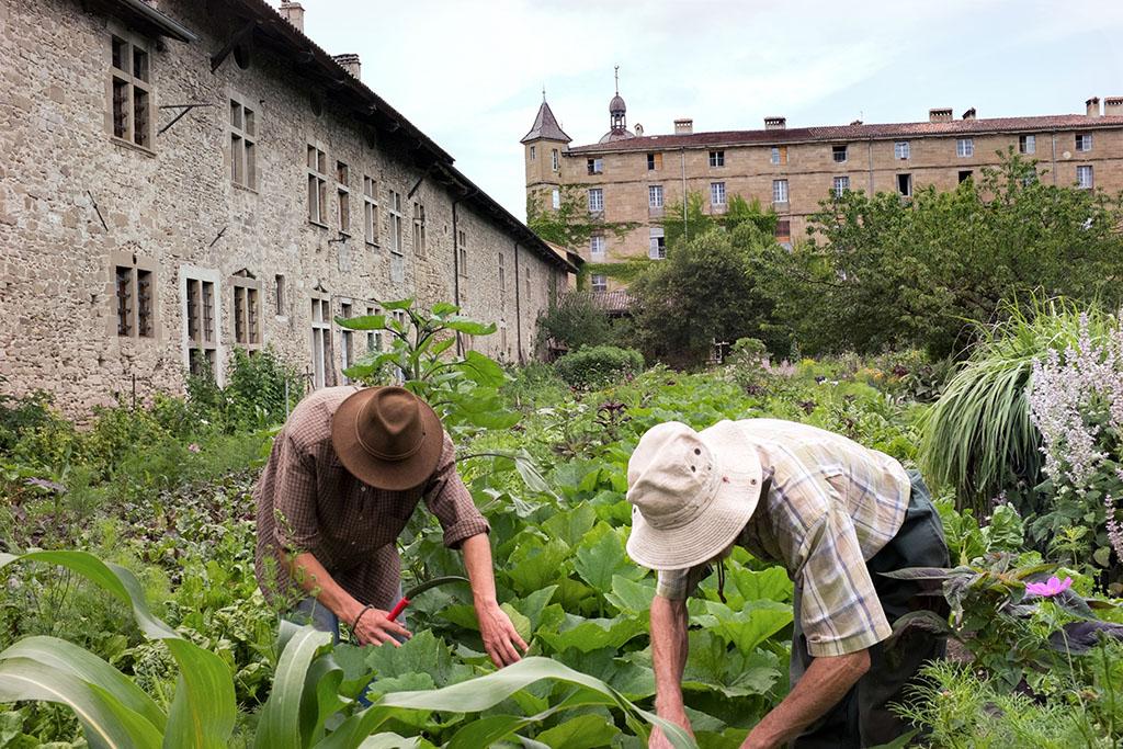 Erwan (féveur) et Dominique (responsable du jardin) au potager.