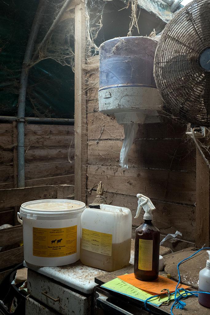 """Les membres de la coopérative """"Le Maquis"""" qui gère la ferme font le choix de produits naturels (tels que les huiles essentielles) pour soigner les bêtes."""